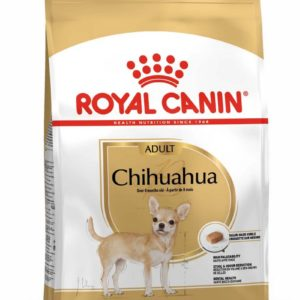 royal canin chihuahuar adulte
