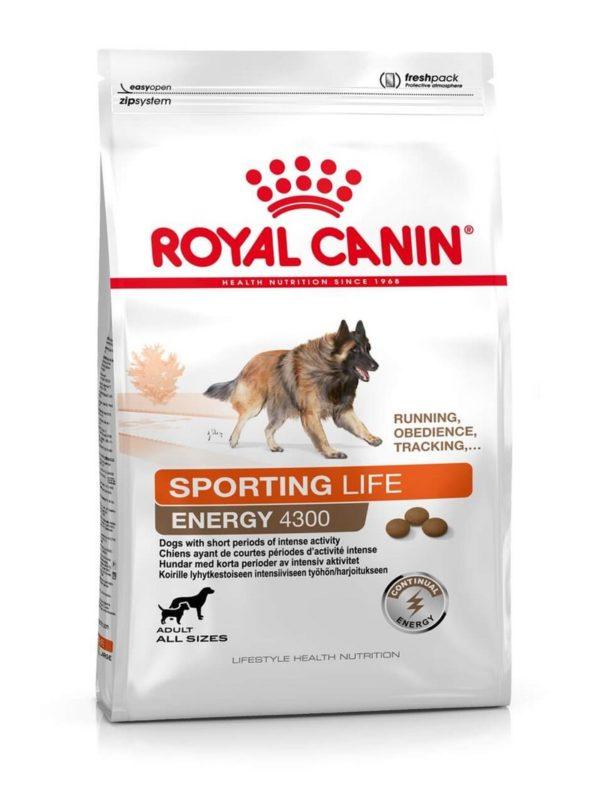 royal canin sporting life energy 4300