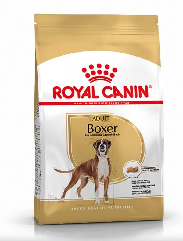 royal canin boxer adulte