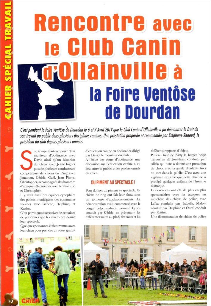 Agility chien en Essonne