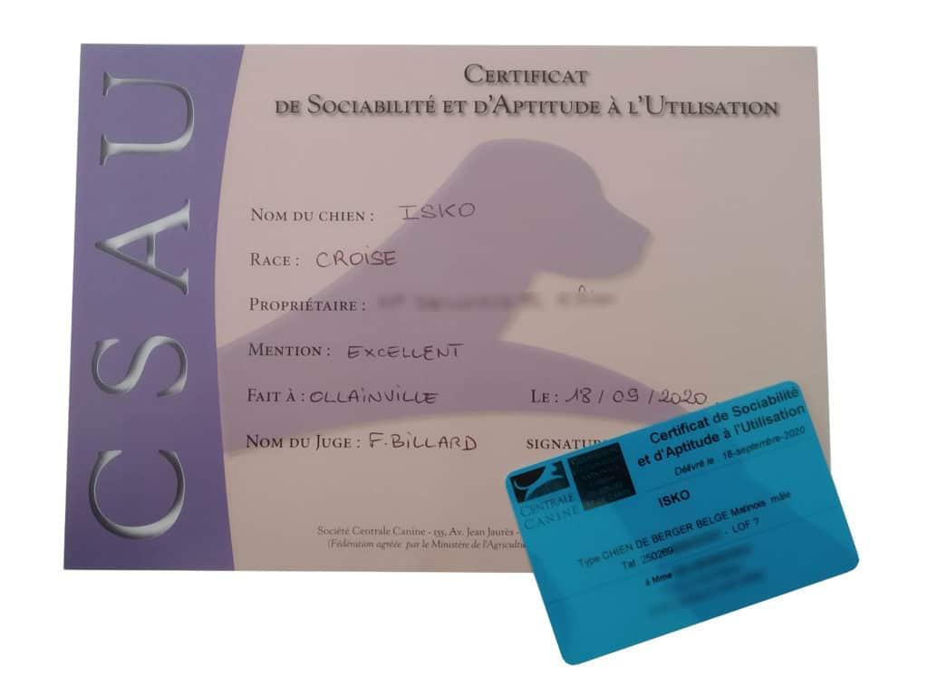 Diplôme obtenu le jour du passage du CSAU ainsi que la carte officielle reçue par courrier ensuite.